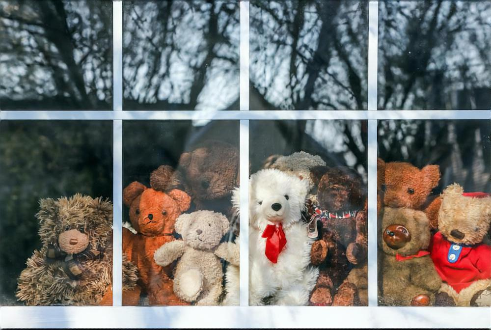 Group of  teddy bears sitting in a window set up for a bear hunt duing quarantine